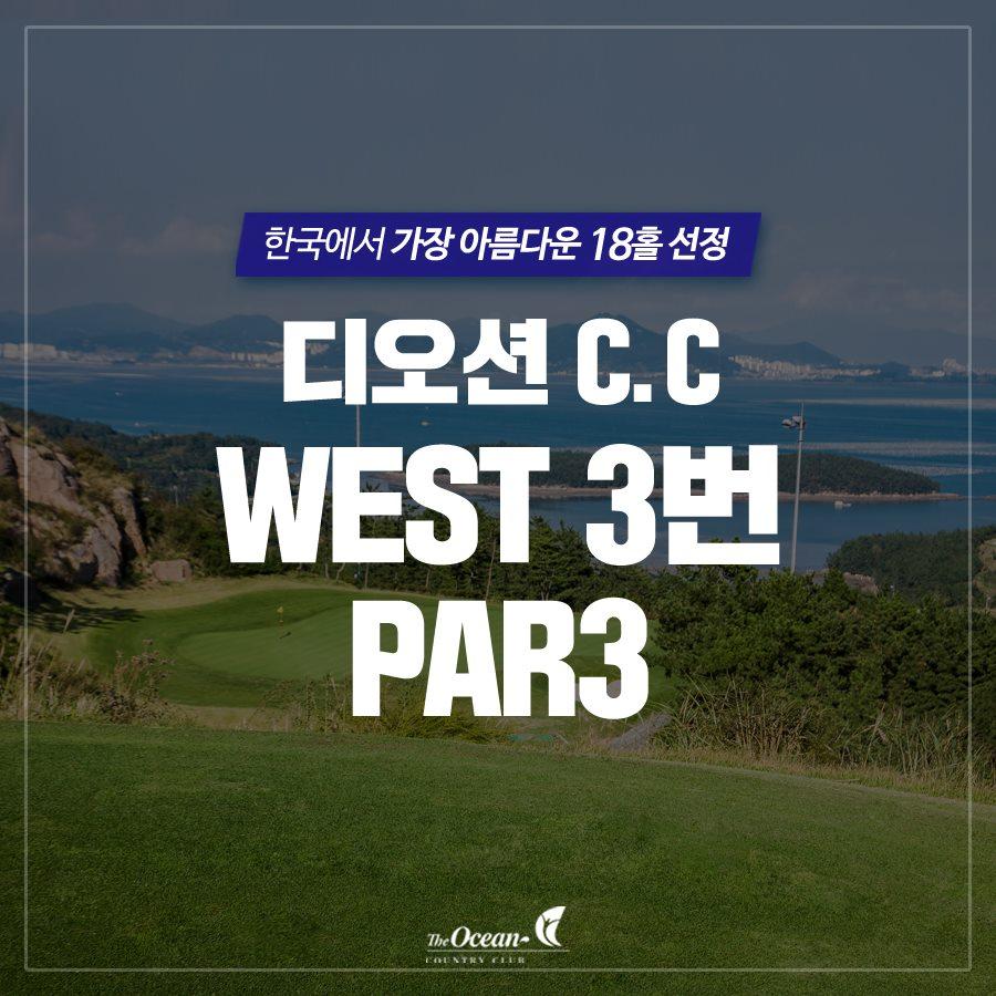 디오션 C.C WEST 3번 PAR3